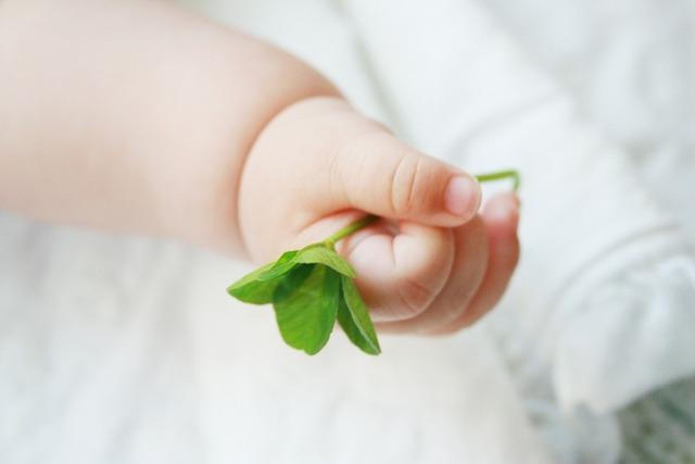 四つ葉のクローバを持っている赤ちゃん